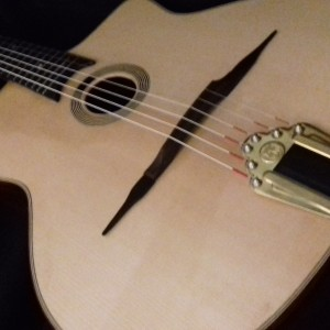 Guitare Jazz Manouche